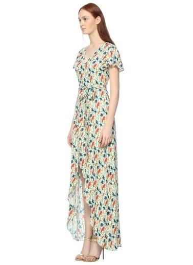 Alice+Olivia Kuş Desenli Uzun Elbise Renkli